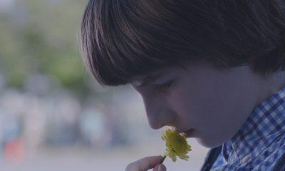 A Boy Called Po Movie