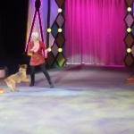 Britney's Circus The 10th Anniversary Dog