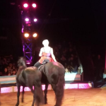 Britney's Circus The 10th Anniversary Horses 2