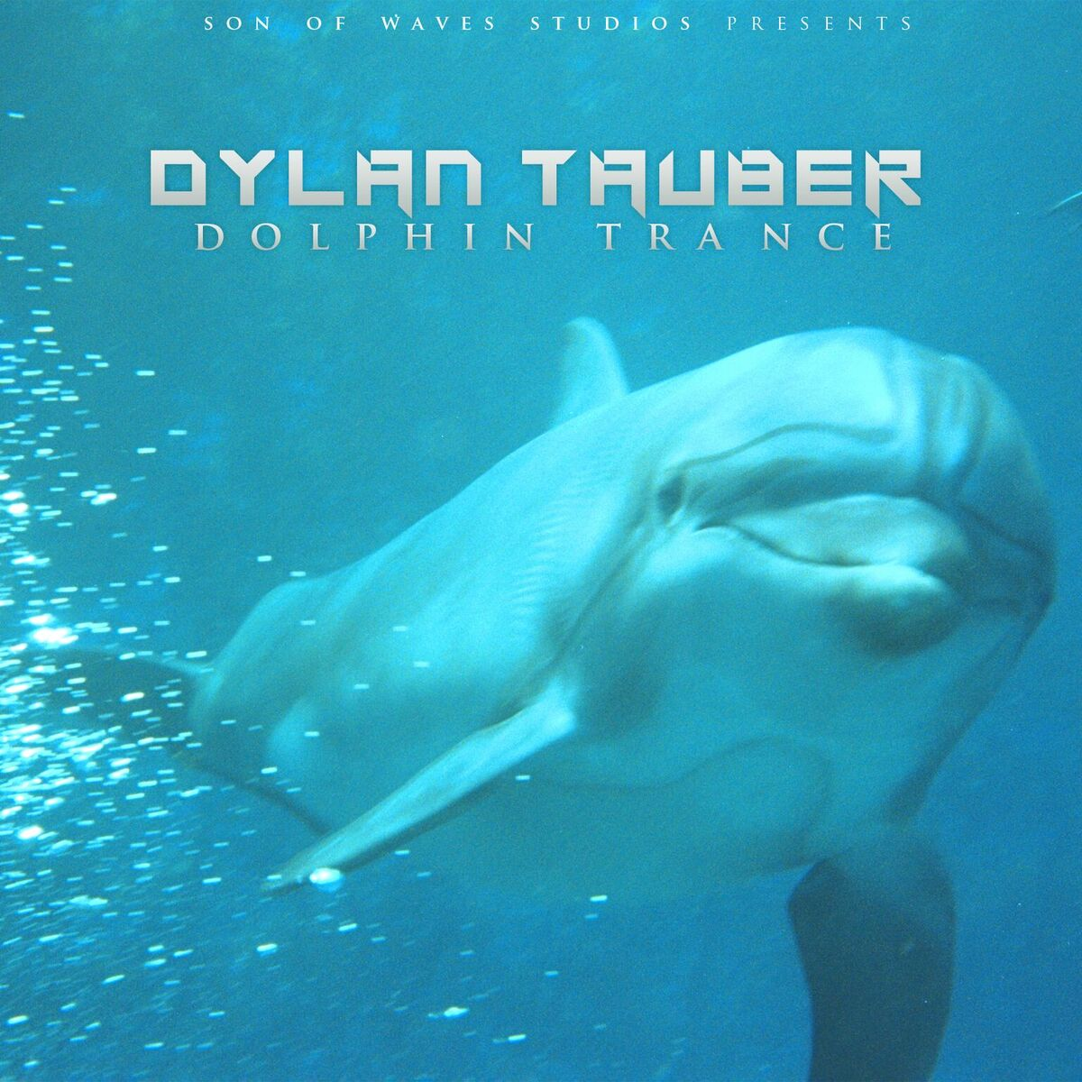 Dylan Tauber Dolphin Trance Album Review