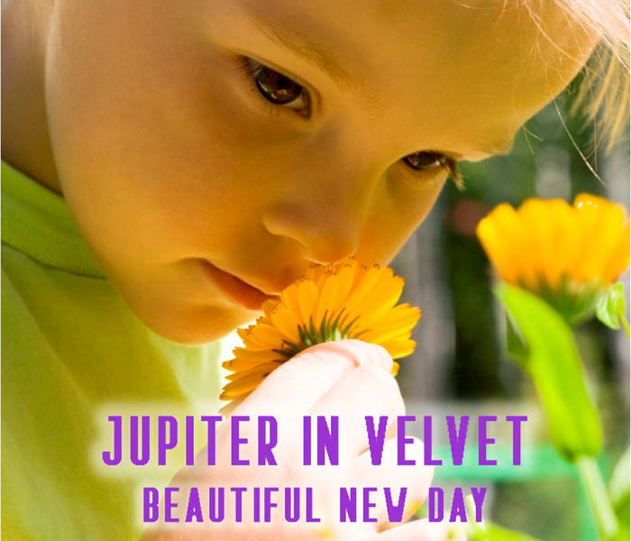 Jupiter In Velvet's Beautiful New Day