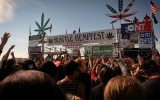 Evergreen The Road to Legalizaton DVD