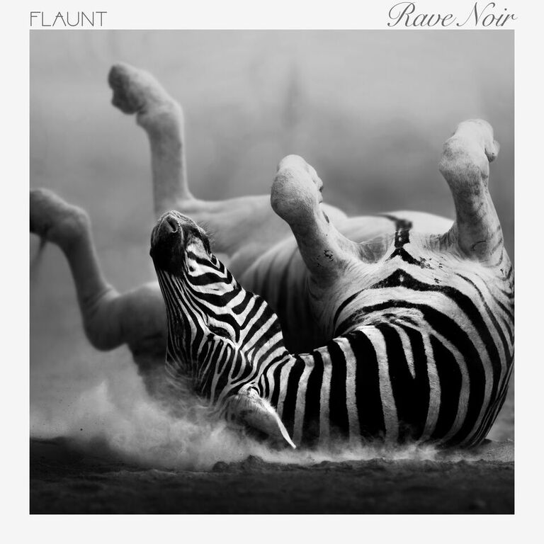 Flaunt's Rave Noir Album Review