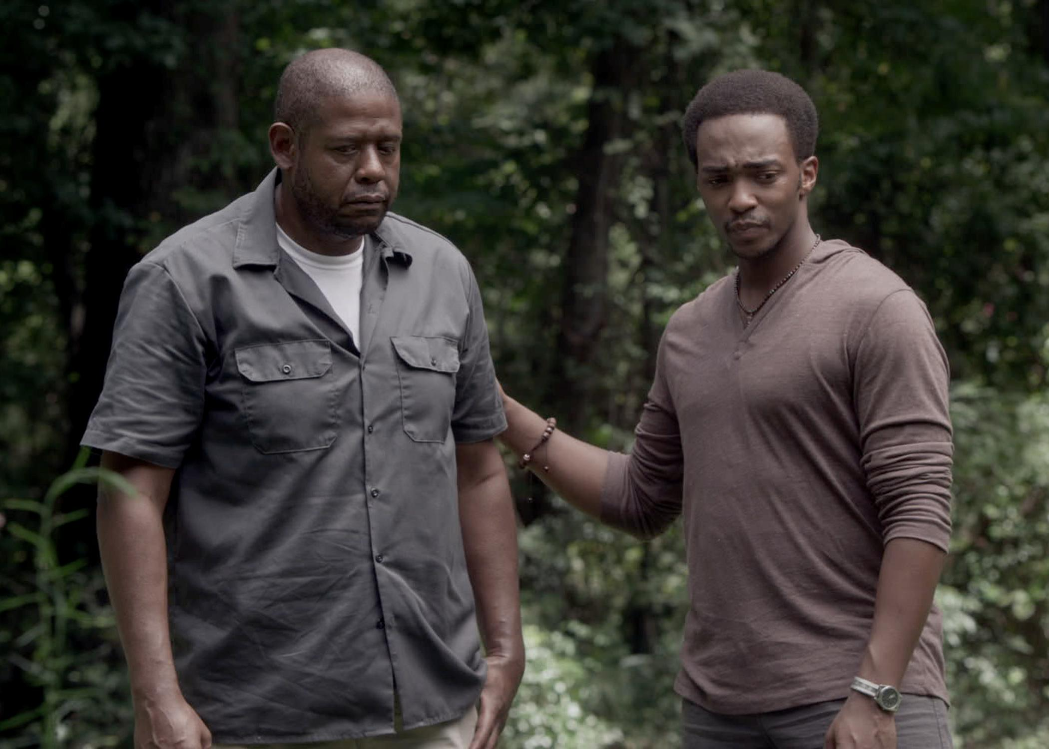 Forest Whitaker Feeling Repentance As Thriller Set For Home Release Forest Whitaker Feeling Repentance As Thriller Set For Home Release