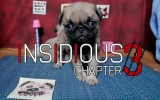 Insidious: Chapter 3 and The Pet Collective Create the Cute Pug Puppy Video