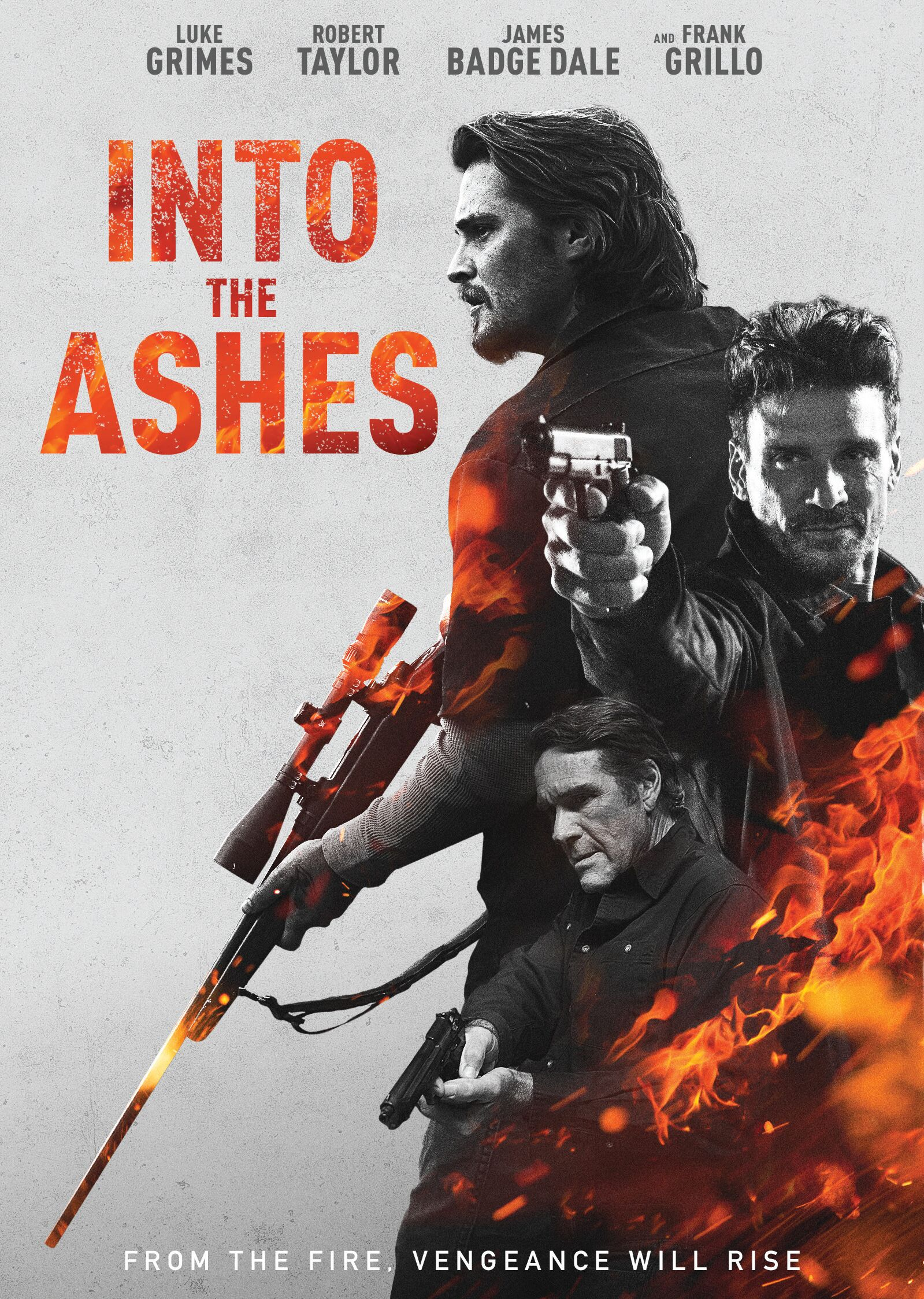 Into the Ashes DVD