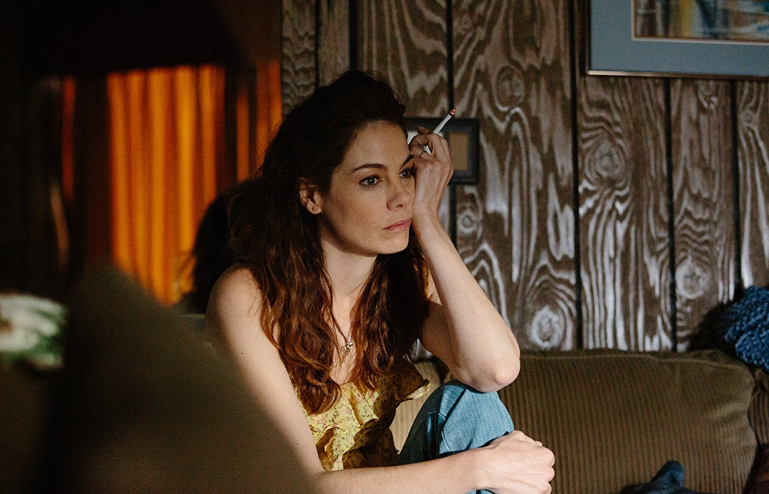 Michelle Monaghan in The Vanishing of Sidney Hall