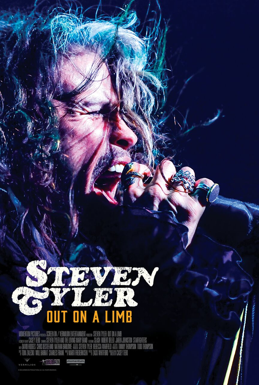 Steven Tyler Out on a Limb Poster