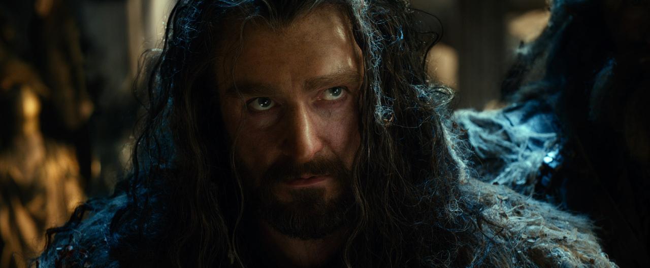 The Hobbit The Desolation of Smaug Image 1