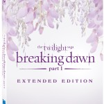 TwilightBreakingDawn Part1 Extended BD CoverArt 150x150 Twilight Breaking Dawn Pillow Up For Auction