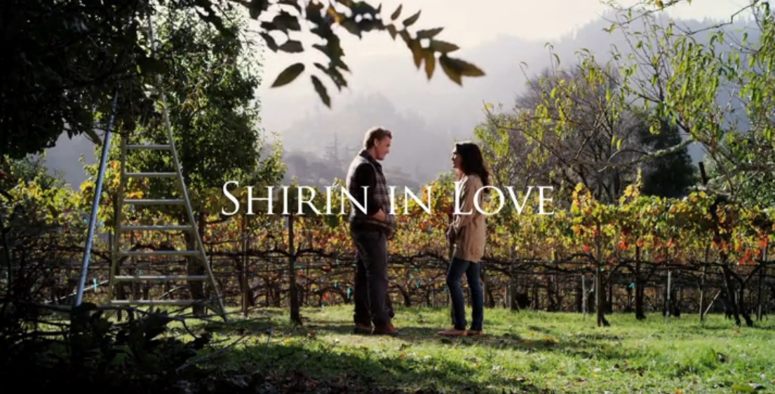 shirin in love Shirin in Love Has Romance Amid Culture Clashes and Self Discovery